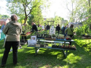 plant_sale_may_2015_photo2