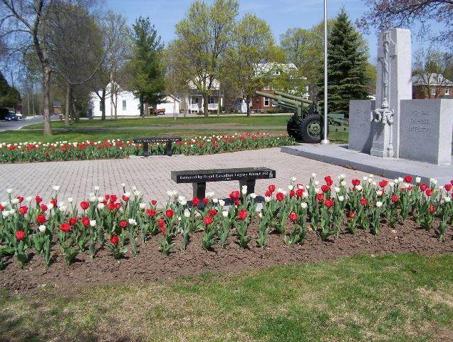memorial_garden_tulips_2016_1